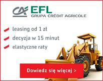 FEL-21-8